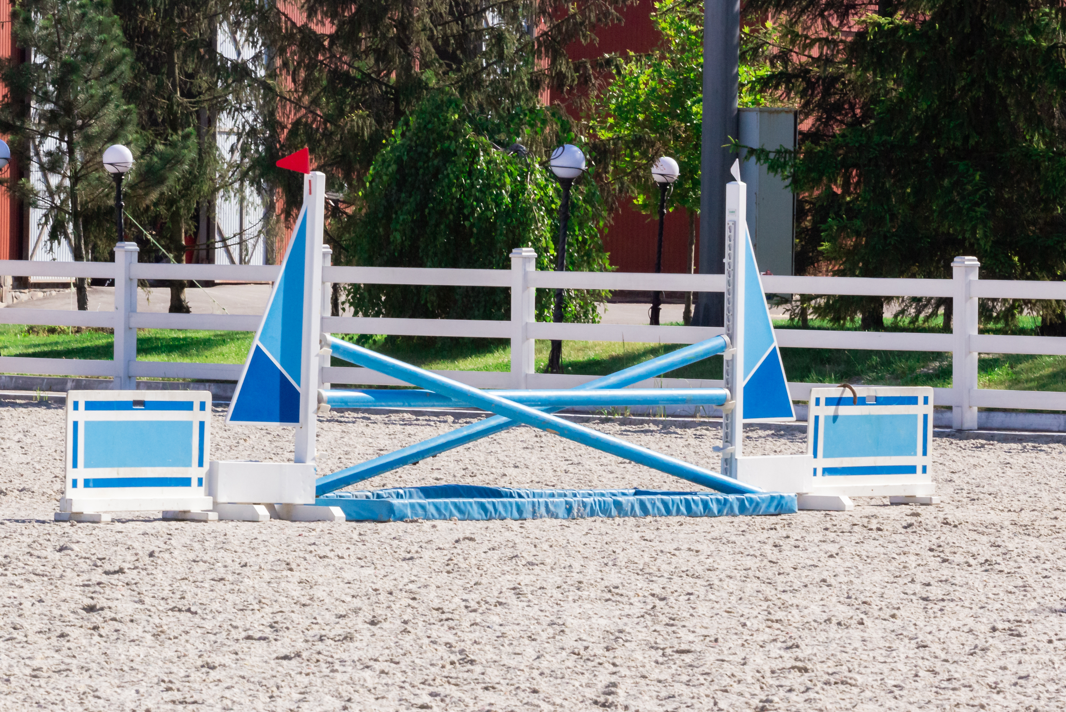 Showjumping For Beginners How To Get Into The Sport Horse Country Tv